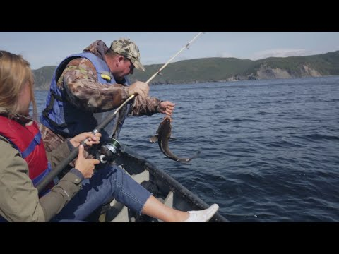 How To Catch The Most Fish Of Your Life In Cox Cove, Newfoundland