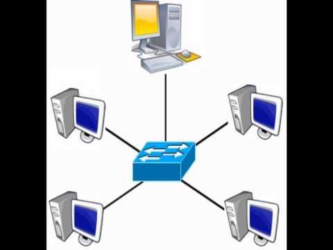 Padrao IEEE 802