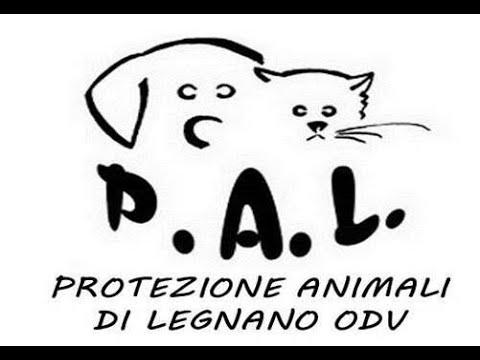 P.A.L. - Protezione Animali di Legnano