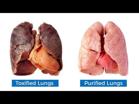 How To Purify And Detox Your Lungs Within 72 Hours