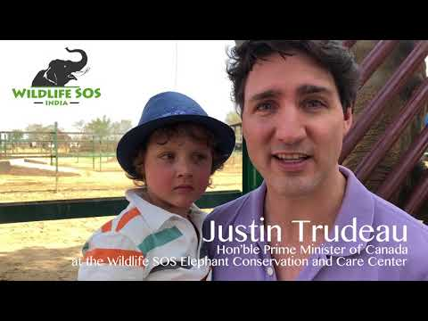 Hon'ble Prime Minister Of Canada Justin Trudeau Talks About Wildlife SOS