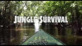 Jungle Survival | Elite Survival Training