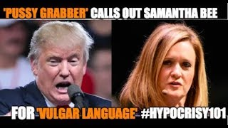 If Anyone Knows 'Vulgar Language', It's Donald Trump.