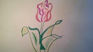 Как нарисовать тюльпан.(В этом видео я покажу как нарисовать тюльпан. Сначала мы нарисуем его простым карандашом, сделаем контуры..., 2016-01-26T15:19:10.000Z)