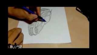 Bmw M3 Gtr Drawing