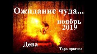 ДЕВА. НОЯБРЬ 2019.  Ожидание чуда… Прогноз Tarot.
