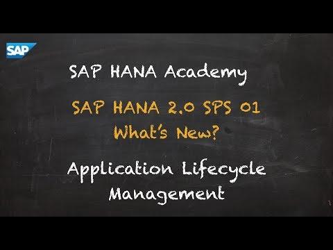SAP HANA Academy - Database Management: What