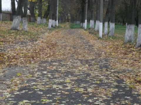 Знакомства в Дмитровске-Орловском - Сайт знакомств Шуры-Муры