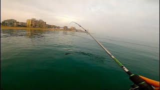 WINTER Kayak fishing in Italian Adriatic Sea with Artificial lures: BIG Needlefish and MUCH MORE