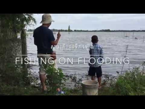 ?????????????????????? ???? ???? | Fishing in Flooding Lake | Prey Veng 2018