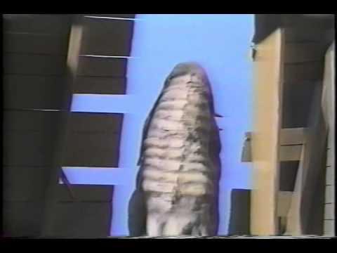 The Dark Planet  1989 (Richard Corben)