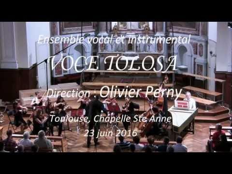 Voce Tolosa.  A. Vivaldi : Andante du concerto pour cordes RV 153.