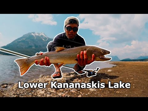 BIG BullTrout & CuttTrout (Lower Kananaskis Lake)