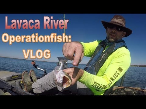 Operationfish: VLOG Mid-December Lavaca River