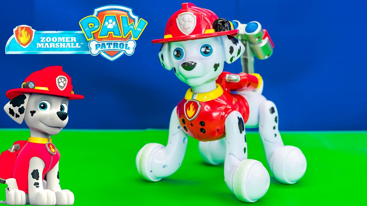 Unboxing The Zoomer Marshall Robot Paw Patrol Pet   YouTube