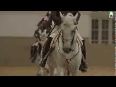 Spanische Hofreitschule Tradition In Der Wiener Hofburg Youtube