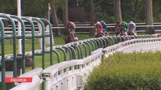 Vidéo de la course PMU PRIX ANDREA