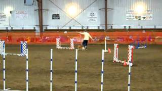 """Open Jumpers Pref 4"""" - Circle G 10/30/10"""