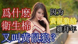 Gambar cover 【黃色笑話12】爲什麽女生的衛生棉又叫黃鼠狼?