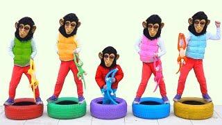 Five little monkeys jumping on the wheels