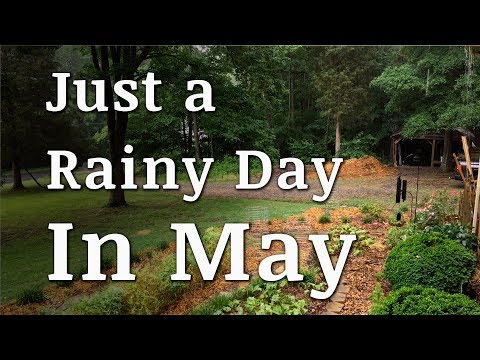Just a Rainy Day in May