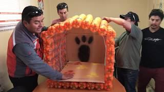 Recicla y Ayuda (Construcción de casas para perros)