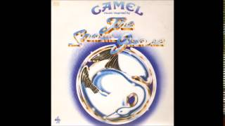 Camel - Flight Of The Snow Goose