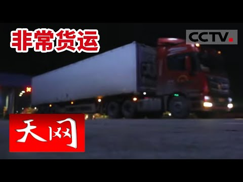 《天网》非常货运: 一辆满载西瓜的货车暗藏玄机 三名收入不菲的司机行动诡异 | CCTV社会与法