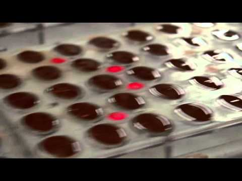 Devina, the finest Belgian chocolate factory 2016