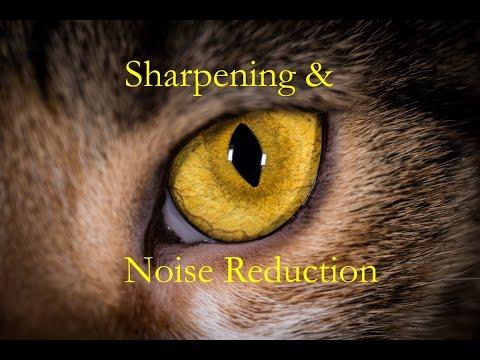 Learn Lightroom 6 - Episode 5: Sharpening & Noise Reduction