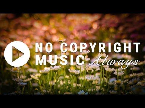Dj Quads - Flirt (FREE DOWNLOAD) [No Copyright Music]