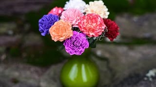 Paper Quilling Carnations Tutorial