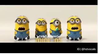 Despecito song by minions