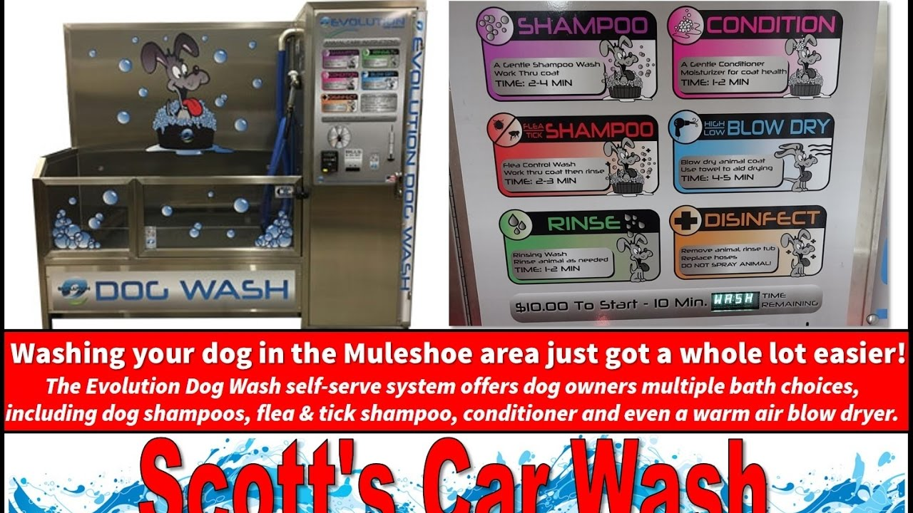 New dog wash station at scotts car wash youtube new dog wash station at scotts car wash solutioingenieria Images