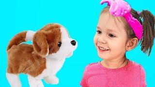 Bingo Dog Song | Nursery Rhymes & Kids Songs by Hey Dana