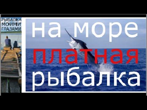 Платная Рыбалка на Чёрном море ,морская рыбалка, рыбалка в ...