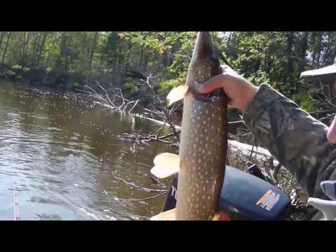 как и чем ловить рыбу в реке с течением видео