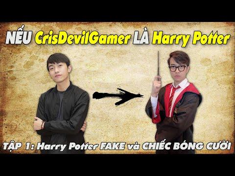 NẾU CrisDevilGamer là Harry Potter | TẬP 1