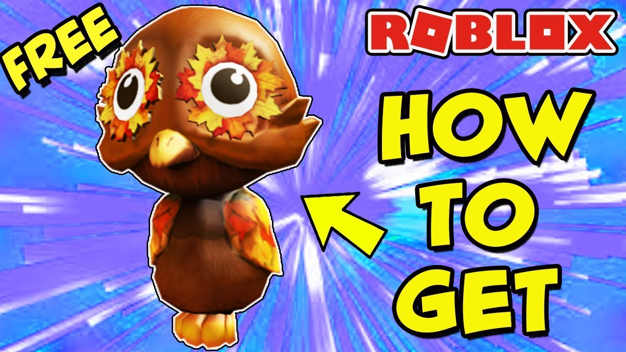 Roblox Halloween Event 2020 How To Get Owl PROMO CODE] How To Get the Fall Shoulder Owl Pal *FREE* (Roblox
