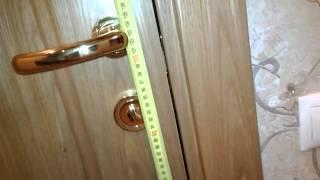 видео двери софья