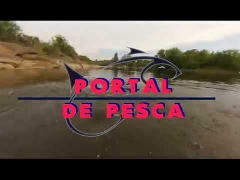 47 programa portal 14 08 2017