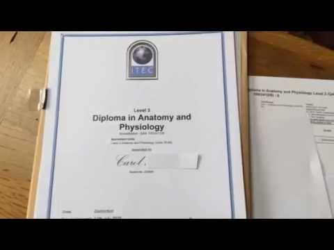 Attractive Itec Diploma In Anatomy And Physiology Image - Anatomy ...