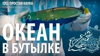 Repeat youtube video ОКЕАН В БУТЫЛКЕ - опыт с водой и маслом