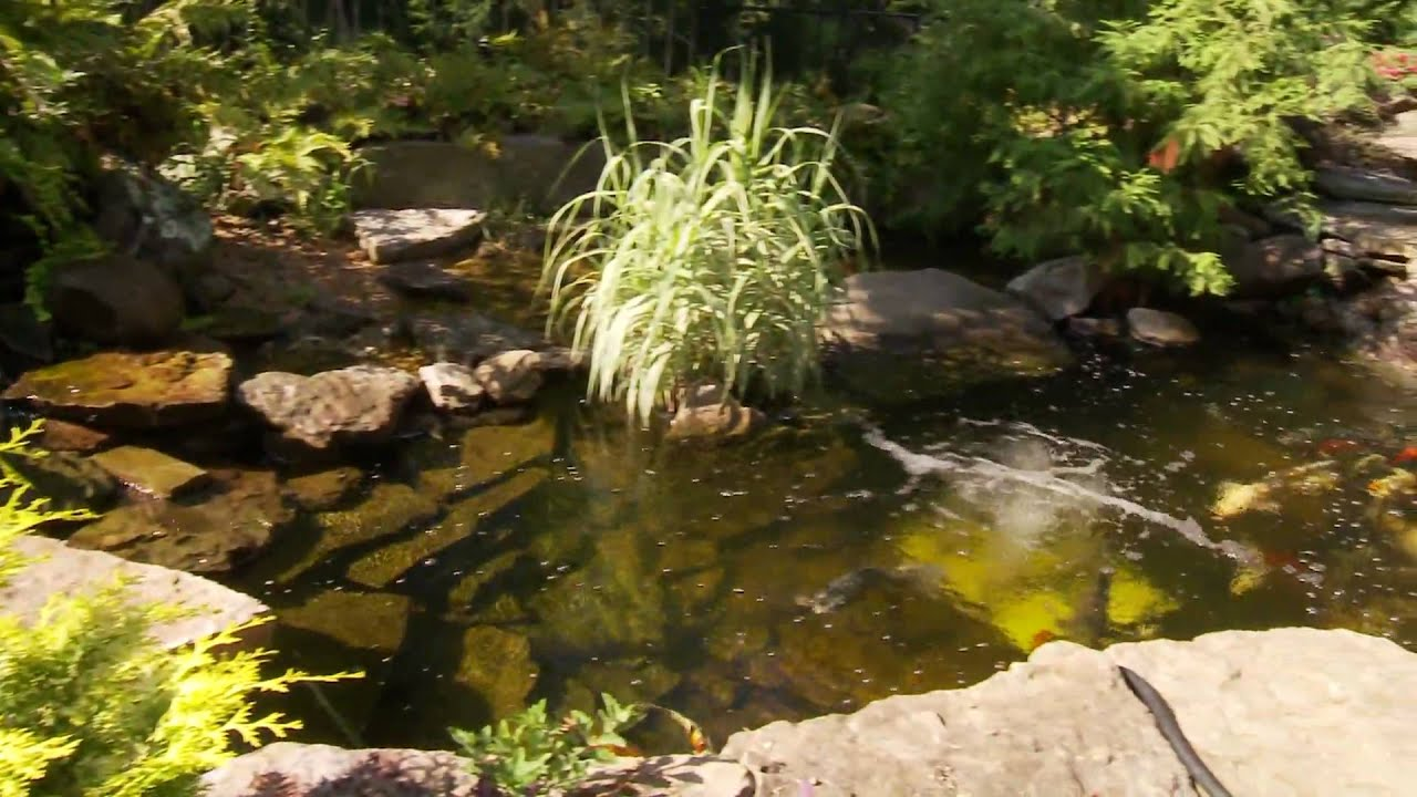 green thumb garden center video by light productions youtube