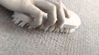 Химчистка ковровых покрытий(Химчистка ковровых покрытий от клининговой компании