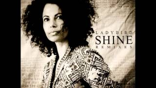 Ladybird - Shine (Pete Dow & Mongini Sus4th Rain Vocal Mix) PROMO