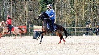 Pony Games - 15/03 La Crash Team