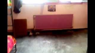 la résidence universitaire des jeunes filles à Délly Brahim 02