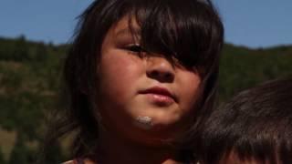 Videoviaje: Isla de Lin Lin, Chiloé, sur de Chile.