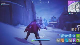 It sucks fortnite that bug